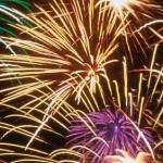 Handige links over behandeling van vuurwerkangst bij dieren