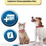 Veterinaire app review – MyVetProgram