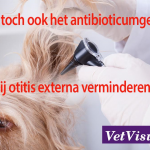 Verminderen van antibioticumgebruik bij otitis externa