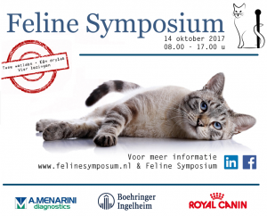 Advertentie Foto 2 Veterinaire nascholing - Feline Symposium 2017